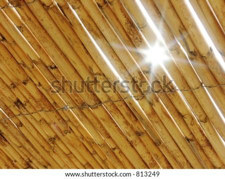 The sun through a bamboo - stock photo