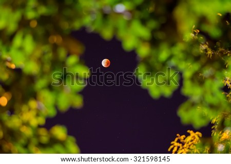 The supermoon lunar eclipse of September 28, 2015 as seen in Paris sky through green foliage. A rare supermoon combines with a lunar eclipse for the first time since 1982. - stock photo