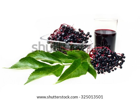 The syrup of black elderberry on white isolated background - stock photo