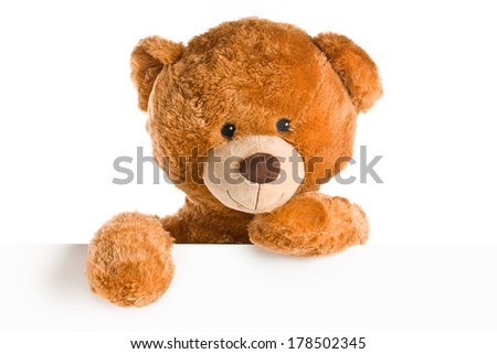 the teddy bear behind whiteboard - stock photo