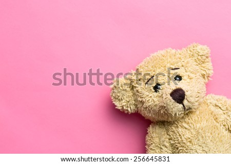 the teddy bear on pink background - stock photo