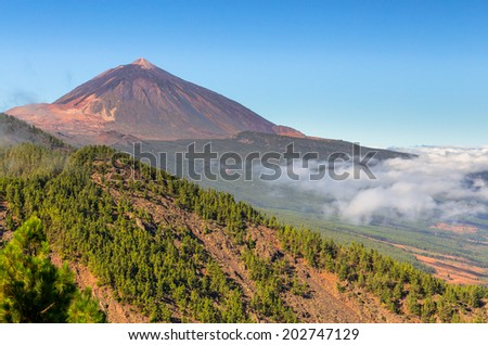 The Teide volcano in Orotava Valley, Tenerife. - stock photo