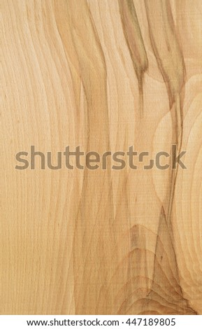 The texture of beech wood
