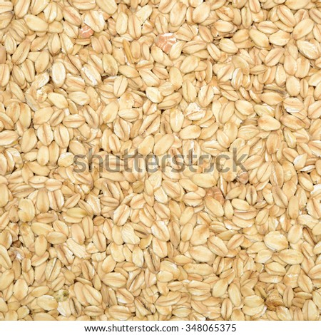 The texture of oatmeal.