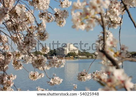 The Thomas Jefferson Memorial on the Tidal Basin in Washington, D.C. during the annual Cherry Blossom Festival