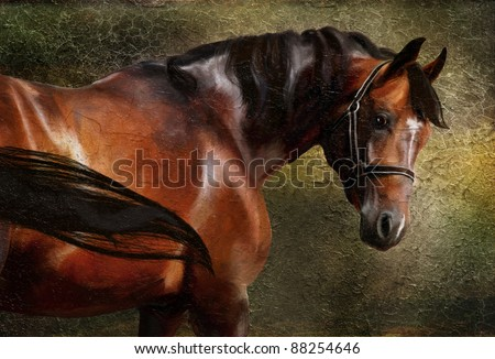 The Thoroughbred classical portrait. Simulation in old painting style - stock photo