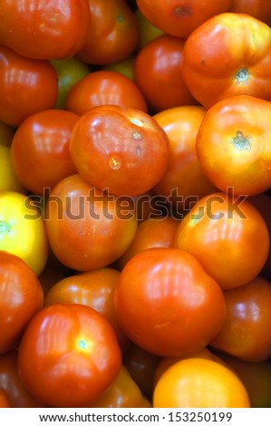 The tomato is the edible, often red fruit of the plant Solanum lycopersicum, commonly known as a tomato plant