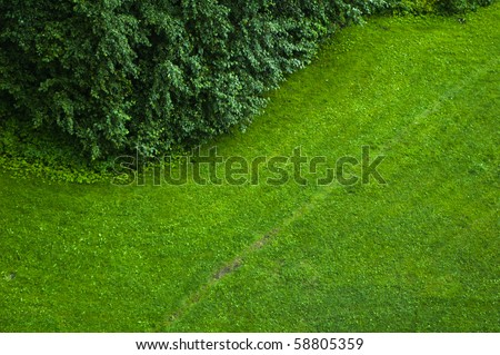 The top view on a green lawn - stock photo