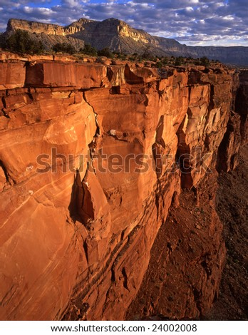 The Toroweap view of the Grand Canyon in Grand Canyon National Park, Arizona. - stock photo