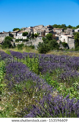 The town of Cereste in Provence with lavender fields in the foreground - stock photo