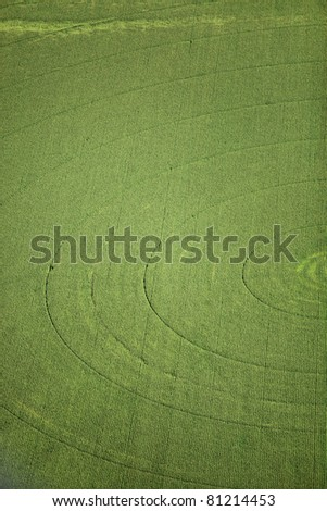 The track marks left in the field by a center pivot sprinkler watering an alfalfa field - stock photo