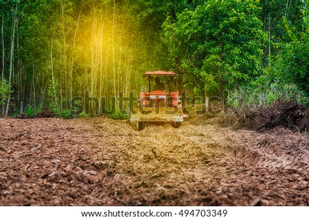 The tractor plow farm with sunlight,Hops farmers with tractor in the collection of hop cones with sunlight