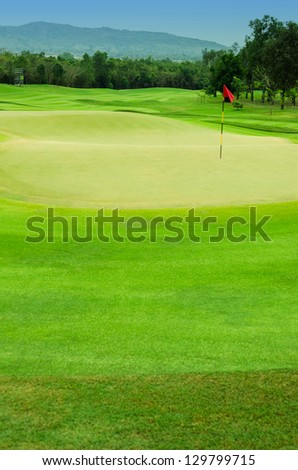 The trees and green grass on a golf course. - stock photo