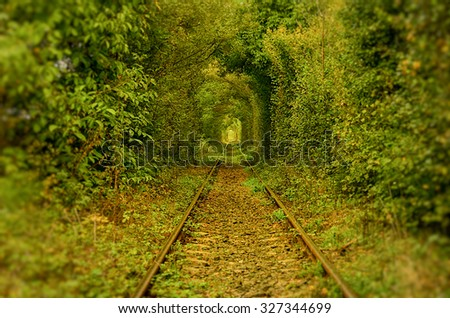 The tunnel of love, Romania. A natural tunnel formed by trees along a rail train in Transylvania. Picture taken in september, year 2015. - stock photo