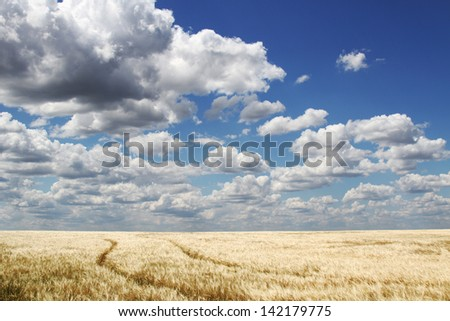 The twisting road to a field under clouds - stock photo