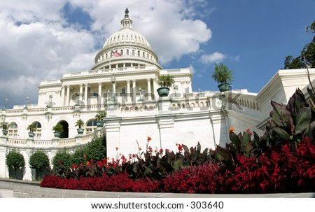 The U.S. Capitol building in Washington, D.C., with flowers in the foreground. - stock photo