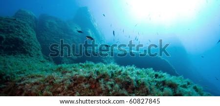 The underwater world - stock photo