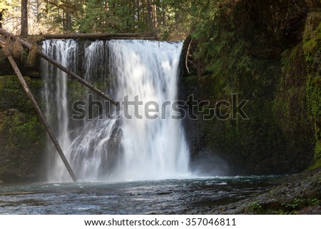 The Upper North Falls located in Silver Falls State Park in Oregon cascading over rock and under dead trees.