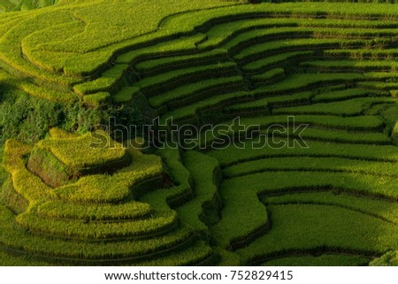 The valley of terraced rice fields , Mu Cang Chai, Yen Bai, Vietnam