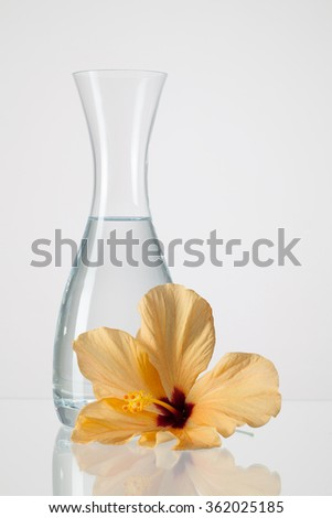 The vase with clean water and hibiscus flower on a glass table - stock photo