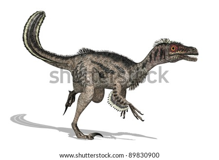 The velociraptor was a feathered dinosaur that lived during the later Cretaceous Period - 3D render.