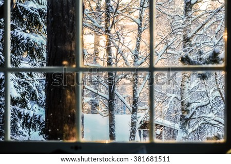 The view from the window of the sunset in the forest - stock photo