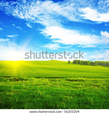 the view of Charming nature, and a lush lawn - stock photo