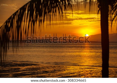 The view of golden sunrise at Penang Bridge with coconut tree. - stock photo