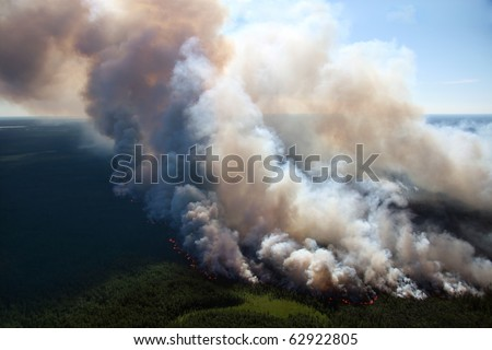 The View of wildfire on height of the flight of the bird. - stock photo