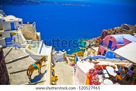 the view on Oia town with a donkey, Santorini, Greece - stock photo