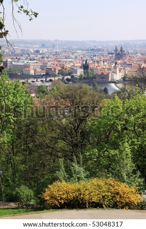 The View on the city Prague with flowering trees and grass