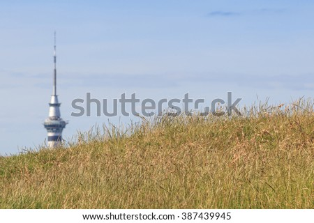 The view point from Mount Eden and blurred background of Auckland Skyline.   - stock photo