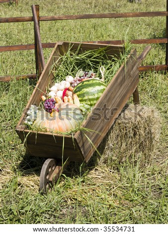 The village carriage loaded by vegetables and fruit