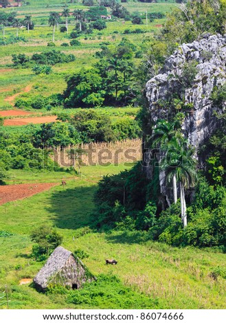 The Vinales valley in Cuba, a famous tourist destination and a major tobacco growing area - stock photo