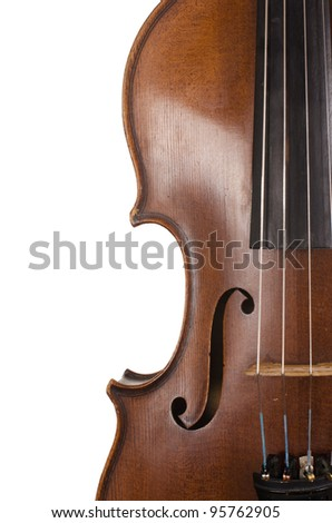 The violin close up on white Background - stock photo