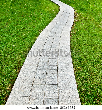The Walk path in the park with green grass background