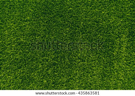 The wall consists of a green hedge , rich beautiful color , can be used as background, texture, backdrop.
