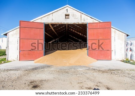 The warehouse with a pile of wheat inside - stock photo