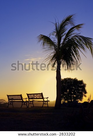 The warm glow of a tropical sunset silhouettes a palm tree and benches - stock photo