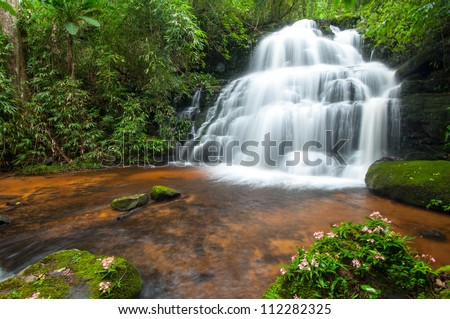 The waterfall in rain forest is beautiful.