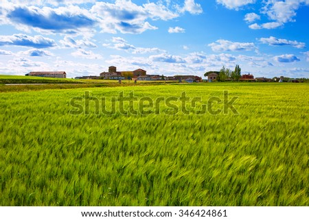 The Way of Saint James in Palencia cereal fields of Spain - stock photo