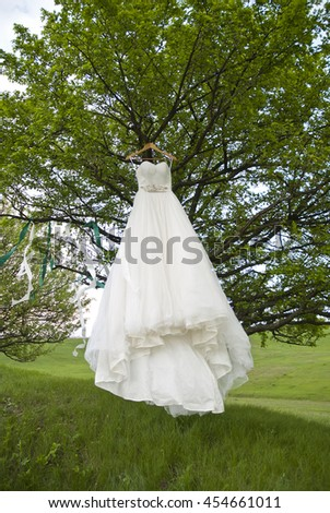 The wedding white dress hangs on a tree