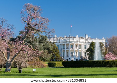 The White House in spring flowers - stock photo