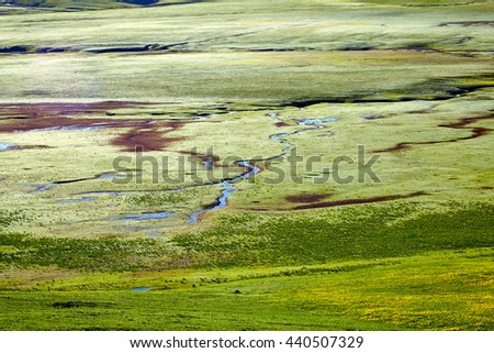 the wide green valley with the rivers in the mountain district the top view - stock photo