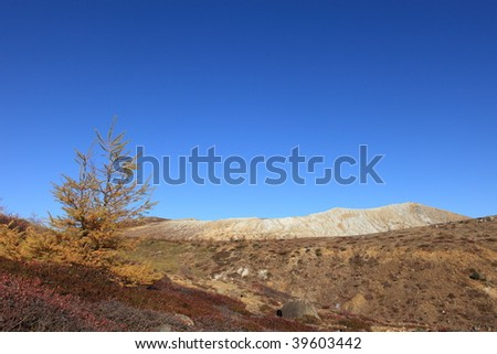The wilderness and volcano - stock photo