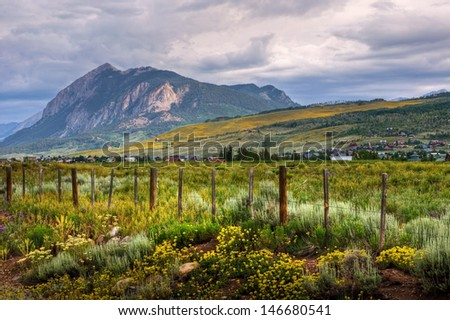 The wildflowers cover the mountains and valleys of picturesque Crested Butte, Colorado.