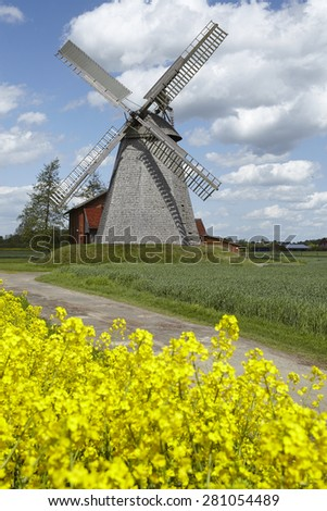 The windmill Bierde (Petershagen, Germany) is a dutch type of windmill and is part of the Westphalia Mill Street (Westfaelische Muehlenstrasse). The foreground is a yellow blossoming field of canola. - stock photo