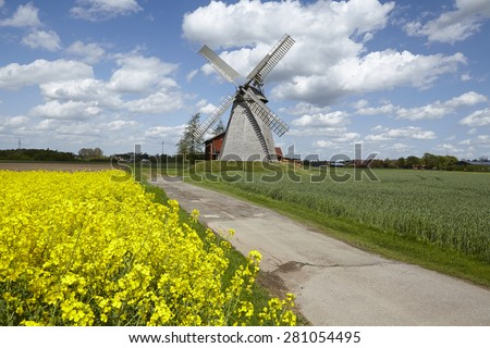 The windmill Bierde (Petershagen, Germany) is a dutch type of windmill and is part of the Westphalia Mill Street (Westfaelische Muehlenstrasse). The foreground is a yellow blossoming field of canola.