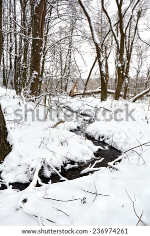 The winter creek in snowy forest - stock photo