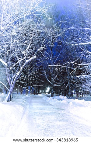 The winter picturesque landscape  - quiet snowy park alley with frosted trees. frosted trees. Vignette processing. - stock photo